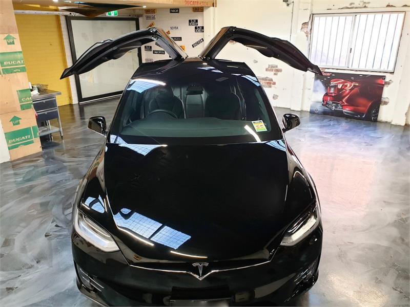 2019 Tesla Model X Fabcar